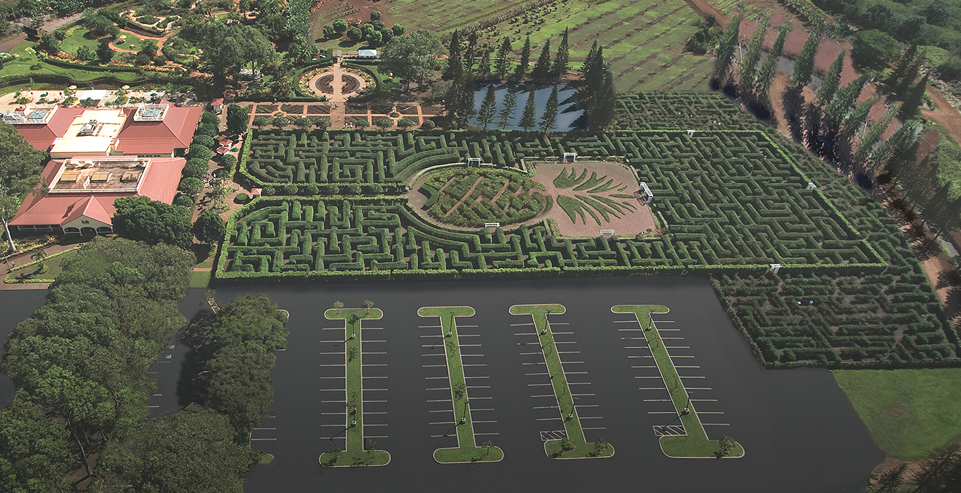 World's Largest Maze declared in 2008, photo from Dole Plantation's web site