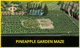 The Pineapple Garden Maze was certified as the world's largest maze in 2008, photo from Dole Plantation's web site