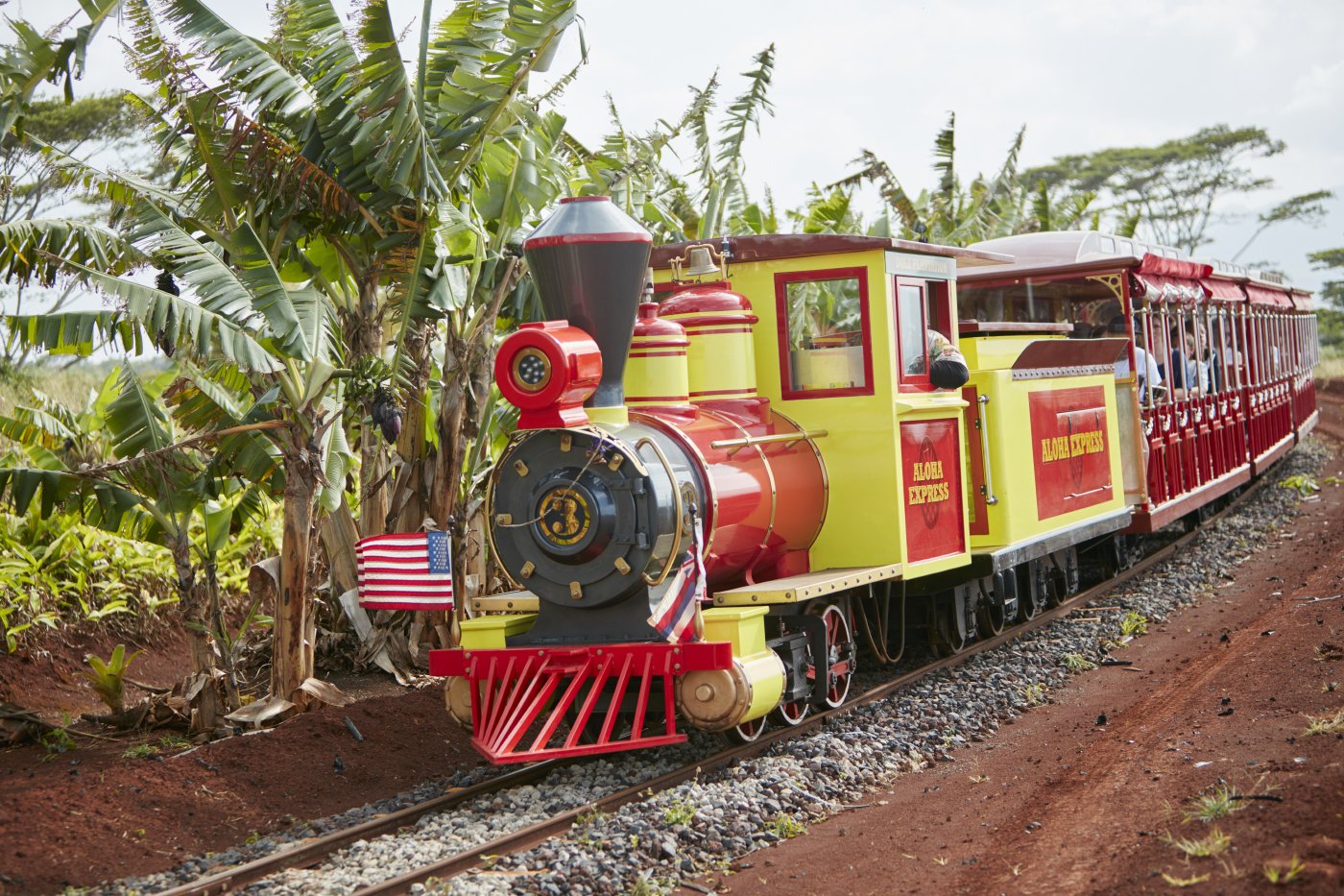 The Pineapple Express was a fun ride of twenty-ish minutes, viewing fruit and crops, photo from their web site