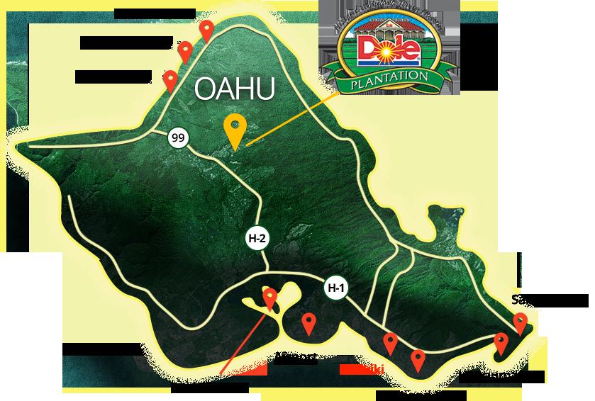 Contact Us Dole Plantation Tours