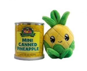Mini Canned Pineapple