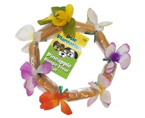 Pineapple Doggie Treat Lei