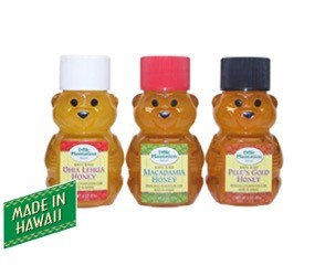 Honey Bear Set